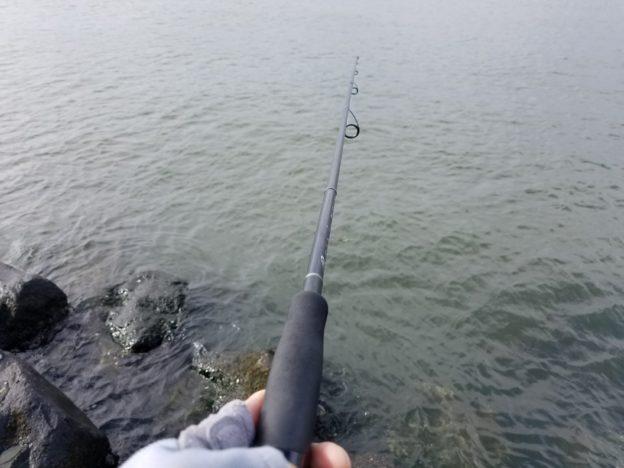 シーバス釣り 竿