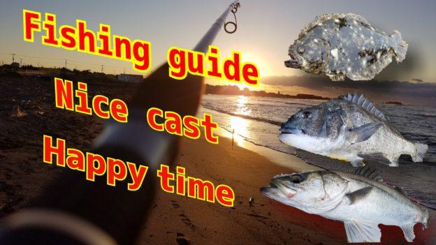 海釣り シーバス ルアー クロダイ ヒラメ