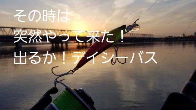 シーバス釣り ルアー デイゲーム旧江戸川