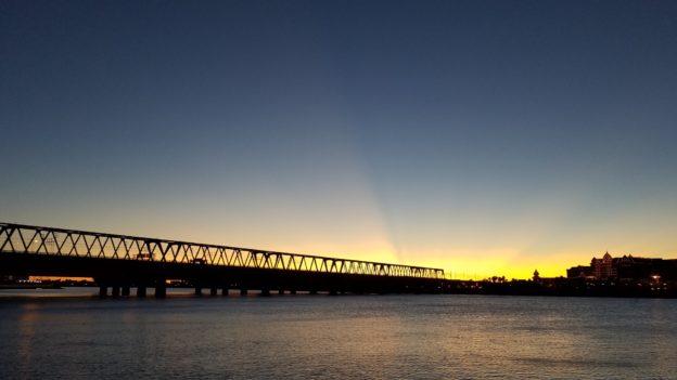 シーバス釣り 旧江戸川