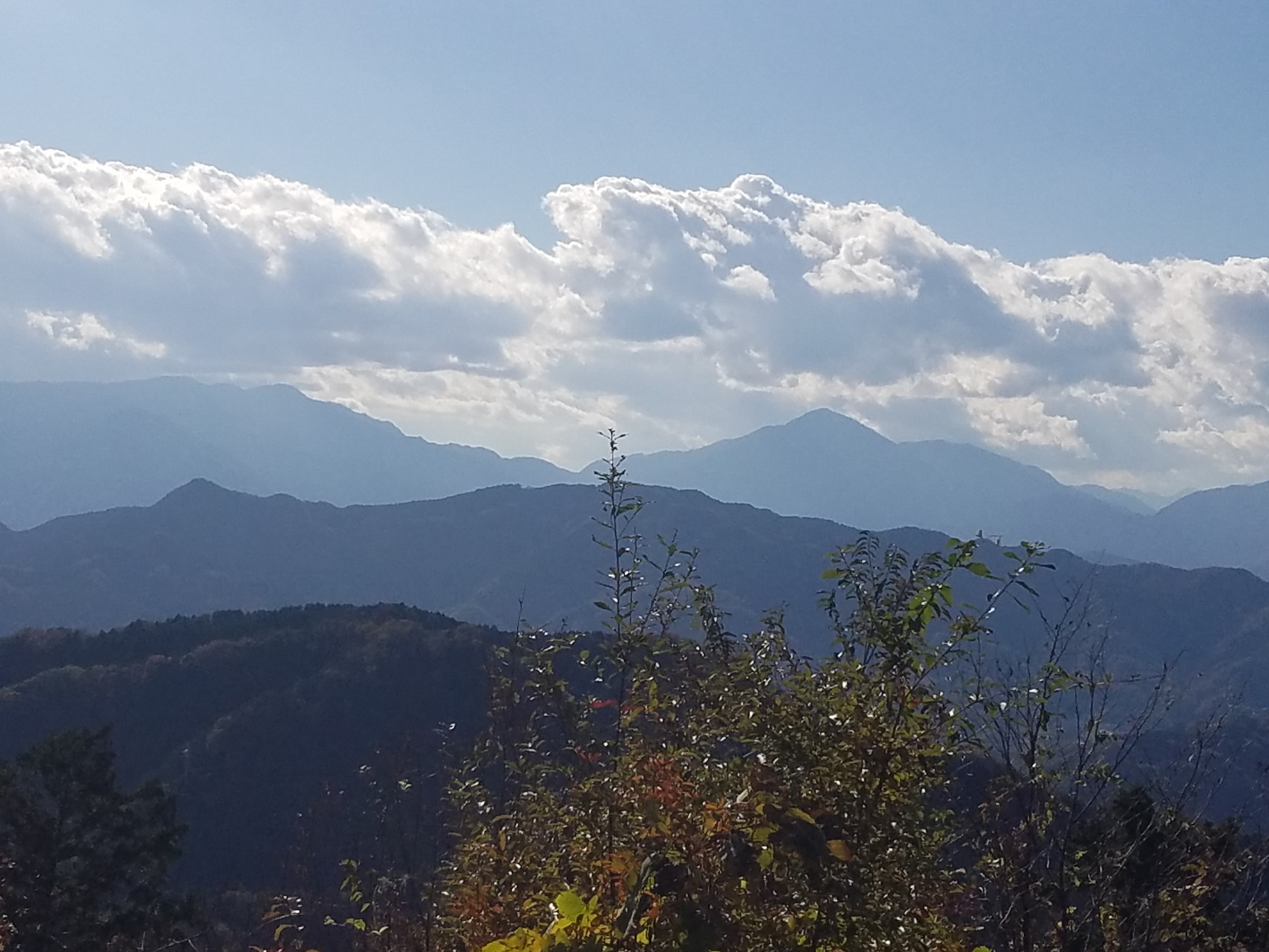 高尾山 アクセス