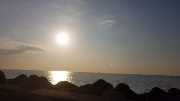 若洲海浜公園 青物 シーバス釣り
